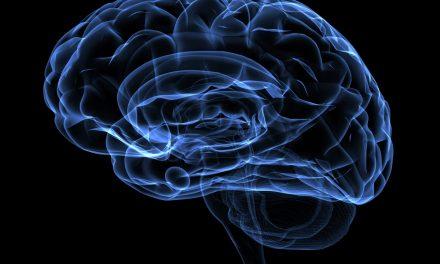 Disorganized? Don't blame it on your brain.