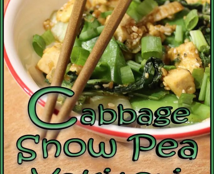 Cabbage and Snow Pea Yakitori Stir-fry is a low-calorie, nutrient dense vegan dish that satisfies that craving for take-out.