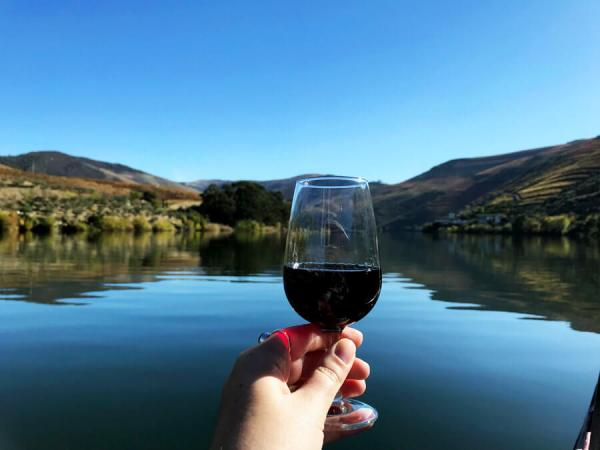 The Best Way to See Douro Valley in Portugal - Taylor's Tracks
