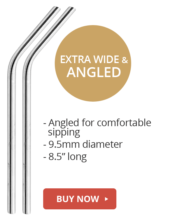 wine angled stainless steel straws