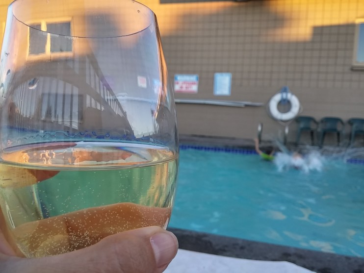 pool safe wine glasses stemless