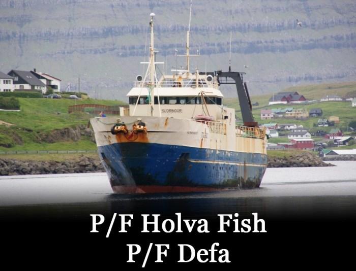 Suðringur, Holva Fish og Defa stuðla liðnum