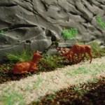 Zur Hirschbrunft nach Waldesruh