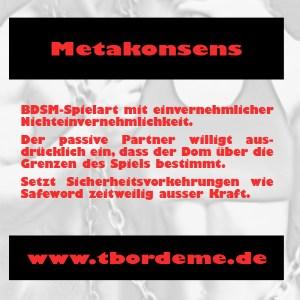 metakonsens-kopie