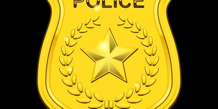 Pinellas | Crime | Police | Public Safety