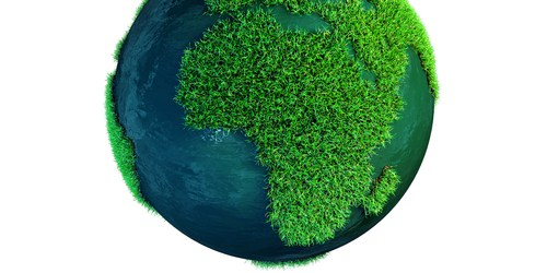 Earth Day | Earth Day Events | TB Reporter