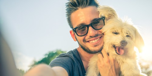 Pet Adoption | PInellas County Animal Services | Homeless Dogs