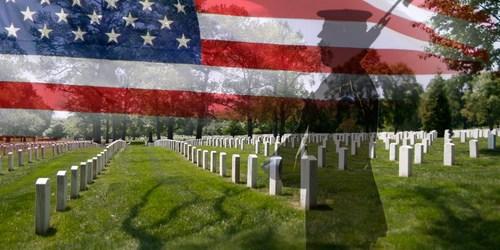 Veterans Day | Veterans | TB Reporter