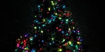 Tree Lighting | Christmas Tree | Holiday Events