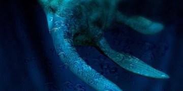Nessie | Loch Ness Monster | Dunedin Highland Games