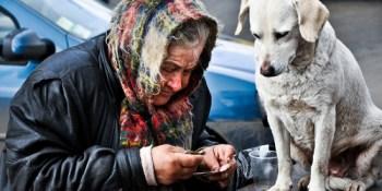 Homeless Count | Homeless | Homeless Leadership Board