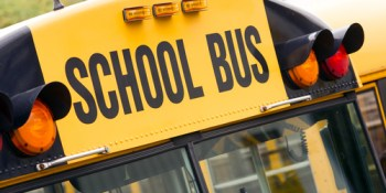 School Bus | Bus | School Transportation