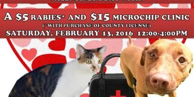 Pasco   Pasco Animal Services   Microchip