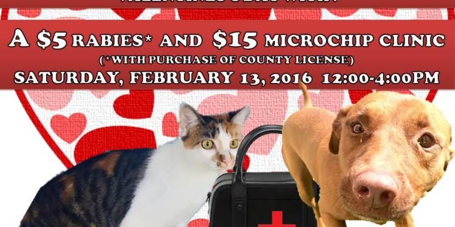 Pasco | Pasco Animal Services | Microchip
