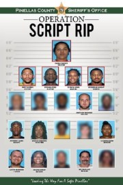 Pinellas Sheriff Makes 23 Arrests in