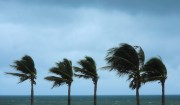 St. Petersburg Offers Update on Tropical Weather