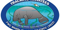 Manatee | Decal | FWC