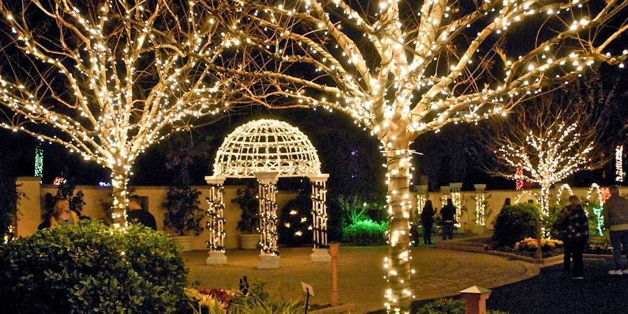 Holiday Lights in the Gardens | Pinellas County | Florida Botanical Gardens