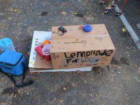 Lemonade Stand | Hillsborough Sheriff | Arrests
