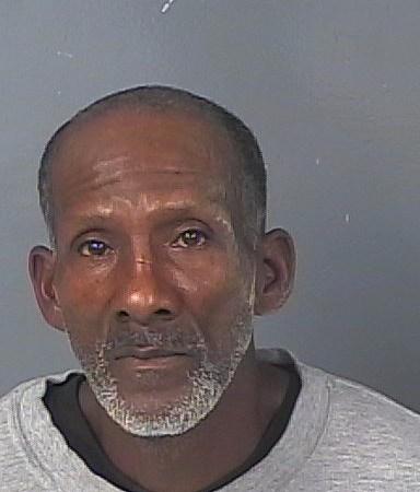 Riley Singleton   Hernando Sheriff   Arrests