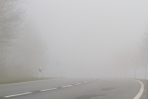 Fog | Foggy Road | Weather