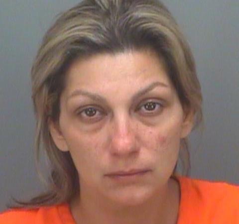 Gina Wilson   Pinellas Sheriff   Arrests