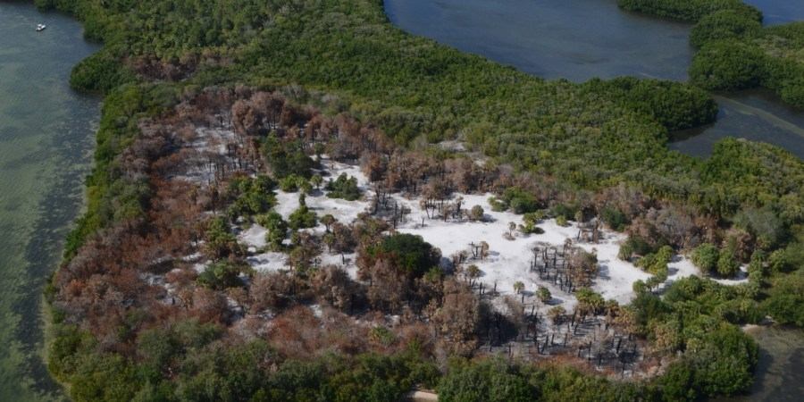Googe Island | Pinellas Sheriff | Fire