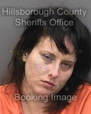 Wrong-Way Driver Stopped by Tampa Police