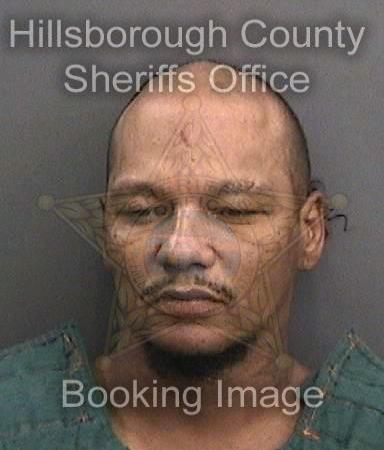 Sol William Hoke | Tampa Police | Arrests