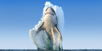 Shark | Ocean | Events