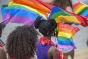 Woodson Museum Celebrates Black Pride