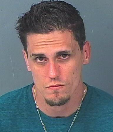 Sean Houle | Hernando Sheriff | Arrests