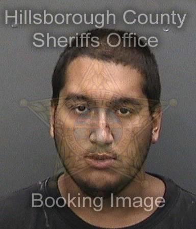 Daniel Luis Santana | Tampa Police | Arrests
