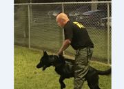 FDLE Certifies Sheriff's K-9 Teams in Hernando