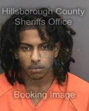 Driver Charged with Manslaughter in Tampa Hit and Run