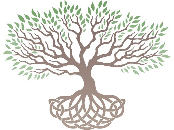 Celtic Tree of Life | Celtic Symbol | Rune