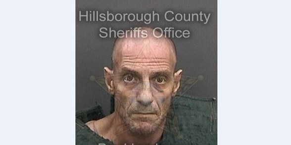 Guy Russell McDonald | HIllsborough Sheriff | Arrests