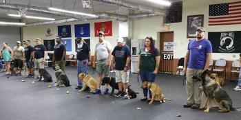 Veterans | Service Dogs | Pasco Animal Services