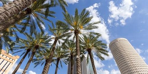 Tampa   Hillsborough County   Travel