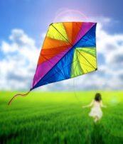 Kite | Sassy Sandpiper | M.R. Wilson