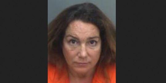 Carolyn Yovan   Pinellas Sheriff   Arrests