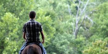 Horse | Horseback Riding | Sports and Recreation