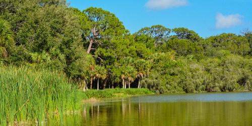 Lake Seminole Park | Lake Seminole | Seminole