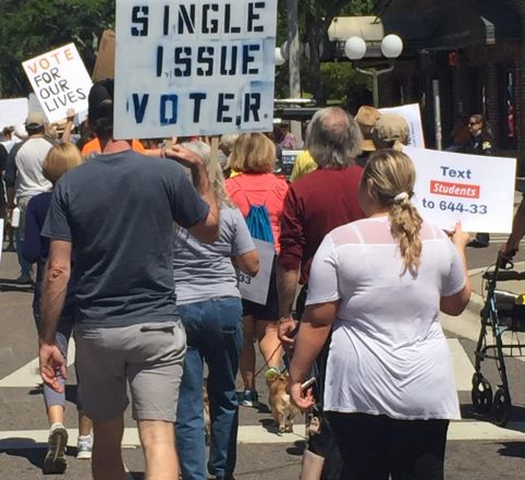 March For Our Lives Pinellas Photos 5 – Single Issue Voter