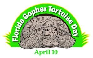 Gopher Tortoise | Wildlife | FWC