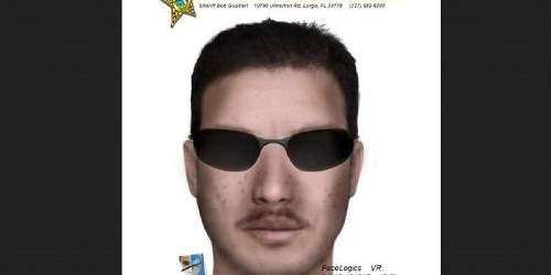 Dunedin Composite | Pinellas Sheriff | Attempted Kidnapping