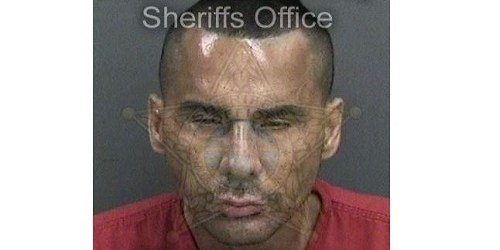 Wresley Torres | Hillsborough Sheriff | Arrests
