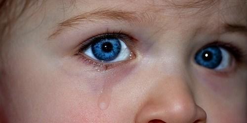 Children | Families | Social Services