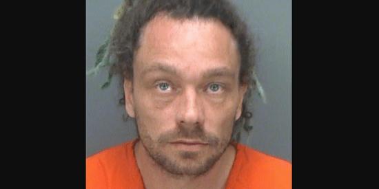 Stephan J. Weekley | Pinellas Sheriff | Arrests