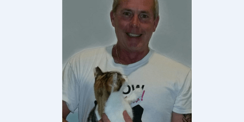 Dan Hester | Meow Now | Animals